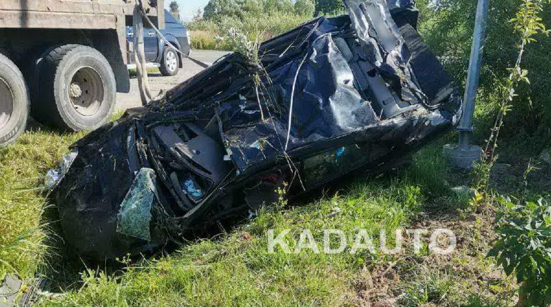 Вчера на дороге Калининград — Багратионовск произошло ДТП из-за выбежавшей на дорогу собаки.