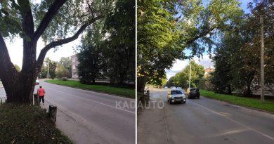 На нашу почту ( admin@kadauto.ru ) прислали фотографию огромной ветки, свисающей над дорогой. Ул. Судостроительная в Калининграде.